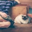 Young woman and cat on sofa — Stock Photo #46646203