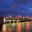 Night bridges, Saint-Petersburg, Russia — Stock Photo #25459427