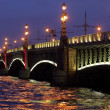 Night bridges, Saint-Petersburg, Russia — Stock Photo #25459441
