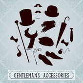 Gentleman accessories — Stock Vector