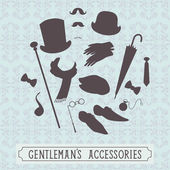 Set of gentleman accessories — Vettoriale Stock