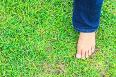 Female feet on grass — Stock Photo