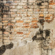 Old cracked concrete vintage brick wall background — Stock Photo #35516221