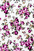 Rose Fabric background, Fragment of colorful retro tapestry text — Stok fotoğraf