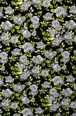 Gray rose fabric background, Fragment of colorful retro tapestry — Stockfoto