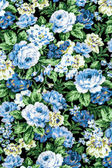 Blue rose on black fabric background, Fragment of colorful retro — Stock Photo