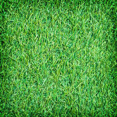 Green artificial turf texture for background  — Stock Photo
