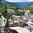 Vernazza village — Stock Photo