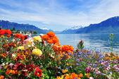 Flowers, mountains ald lake — Stock Photo