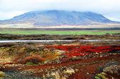 Icelandic lendscape: ground and volcano — Stock Photo