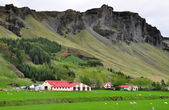 Icelandic farm — Stock Photo