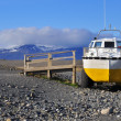 Amphibian Vehicle in Iceland — Stock Photo