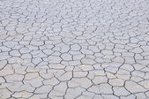 Dry ground — Stock Photo