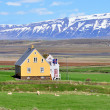 Stock Photo: Icelandic house