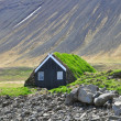Icelandic house with a turf roof — Stock Photo #26949637