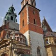 Wawel cathedral — Stock Photo