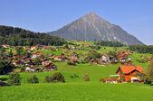 Swiss landscape — Stock Photo