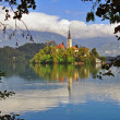 Stock Photo: Bled church