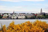 Reykjavik city — Stock Photo