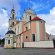 Stock Photo: Vilnius church