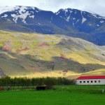 Islandský krajina — Stock fotografie
