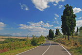 Road in Toscana — Stock Photo