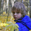 Cute boy in the forest — Foto Stock