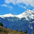 Bavarian Alps — Stock Photo #34812569