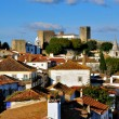 Fort of Obidos — Stock Photo