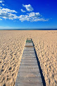 Wooden path to the sea — Stock Photo