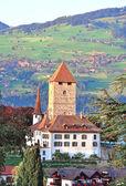 шпиц замок, швейцария — Стоковое фото