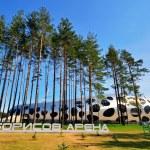 ������, ������: Borisov Arena soccer stadium in Belarus