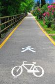 Bike and pedestrian path — Stock Photo