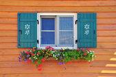 Window with flowers in italian house — Foto de Stock