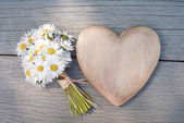 Heart and daisies — Stock Photo