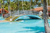 Okouzlující krásný výhled na slunečné tropické zahradě pozadí — Stock fotografie
