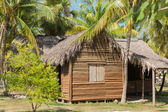 Great view of abandoned old house in tropical garden — Stock Photo