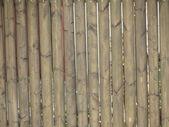 木製フェンス — ストック写真