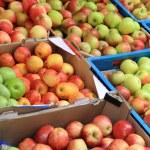 Apples — Stock Photo #27581187
