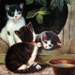 Cats painting — Stock Photo #35982125