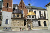Wawel Castle and catedral in Krakow Poland — Stock Photo