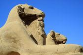 Culture of Egypth — Stock Photo