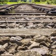 Railroad Track details 019-130509 — Stock Photo