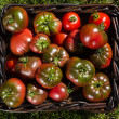 Tomatoes in basket — ストック写真 #29967433