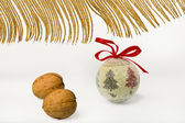 Christmas nuts — Stock Photo