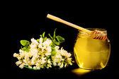 мед акациевый — Стоковое фото