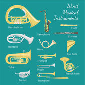Wind Musical Instruments — Stock Vector