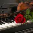 Piano red rose violin — Stock Photo