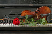 Violin piano rose — Stock Photo