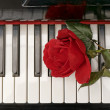 Piano keyboard and red rose — Stock Photo